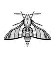 moth hand drawn vector image vector image