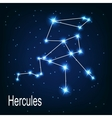 The constellation Hercules star in the night sky vector image vector image