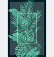 tropical forest with square frame transparent vector image vector image