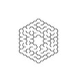 circular labyrinth in shape a hexagon vector image
