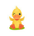 cute little yellow duckling character sitting on vector image vector image
