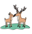 deer couple over grass in watercolor silhouette vector image