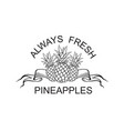 emblem of pineapple fruit vector image vector image