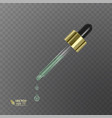 realistic pipette on the transparent background vector image