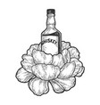 whiskey bottle flower sketch engraving vector image vector image