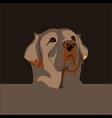 a dog head design vector image vector image