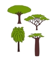 african trees vector image vector image