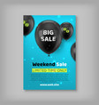 banner inscription big sale vector image