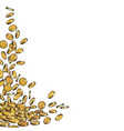 falling gold coins background with empty space vector image vector image