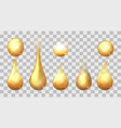 golden drops set vector image vector image