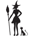 witch cat vector image
