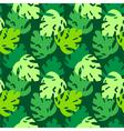 monstera leaves pattern green vector image