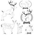 Set of vintage deer emblems labels logo vector image