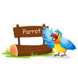 A colorful parrot blinking his eye vector image vector image
