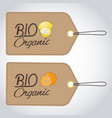 Bio organics labels vector image
