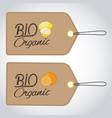bio organics labels vector image