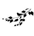 bird on a branch silhouette vector image vector image