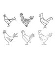 set of sketches of birds roosters vector image vector image