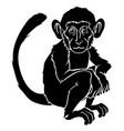 stylized monkey vector image vector image