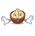 surprised macadamia mascot cartoon style vector image vector image