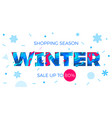 winter sale banner seasonal holiday shopping vector image vector image
