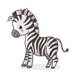 zebra is standing on a white background vector image vector image