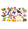 set of exotic flora and fauna in cartoon style vector image