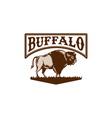 Buffalo American Bison Side Woodcut vector image vector image
