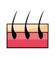 capillary hair symbol vector image