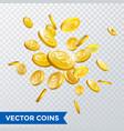 gold coin splash bingo jackpot win casino poker vector image