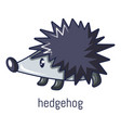 hedgehog icon cartoon style vector image