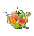 orange grapefruit lime lemon juice and fruit vector image vector image