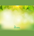 spring summer natural green background with vector image vector image