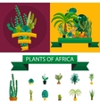 Africa plants Palm trees flowers and green grass
