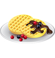 belgian waffles with chocolate and berries vector image