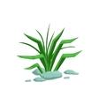 Growing Grass Natural Landscape Design Element vector image vector image