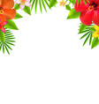 Tropical Flowers Border vector image vector image