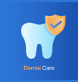 dental care concept good hygiene tooth prevention vector image