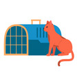 a red cat sits near an animal veterinary cage vector image vector image