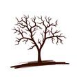 a symbol tree vector image vector image