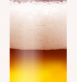 beer background for flyer poster banner vector image vector image