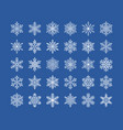 cute snowflakes collection isolated on white vector image vector image
