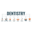dentistry and stomatology banner vector image vector image