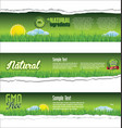 ecology nature green torn paper background vector image vector image