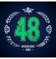 Grunge 48 Number vector image