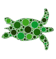 of dotted green turtle vector image vector image