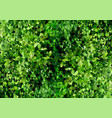polygonal background texture green foliage vector image vector image