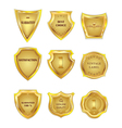 Set of golden vintagel design elements on white vector image vector image