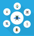flat icon fly set of dung hum mosquito and other vector image