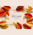 autumn background decorate with fall leaves vector image